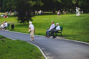 Пенсионный калькулятор 2021 года - свежие данные для расчета пенсии