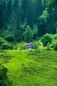 Пожизненно наследуемое владение земельным участком: что это такое и можно ли продать такой участок