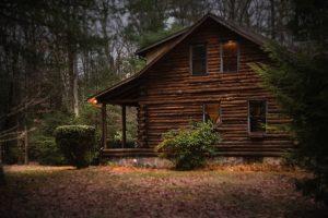 Дом в лесу: законно ли построить