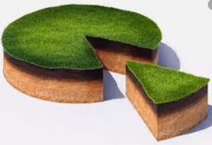 Земельный пай: купля/продажа, дарение, наследование и особенности других сделок