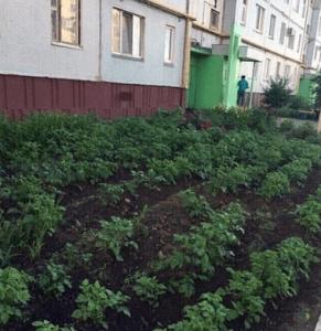 Можно ли приватизировать землю под окном своей квартиры